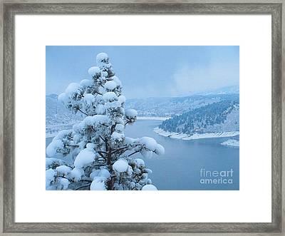 Fresh Snow Framed Print by Jeffrey Birr