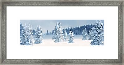 Fresh Snow On Pine Trees, Taos County Framed Print by Panoramic Images