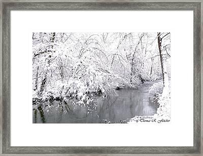 Fresh Snowfall Framed Print