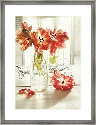 Fresh Spring Tulips In Old Milk Bottle  Framed Print by Sandra Cunningham