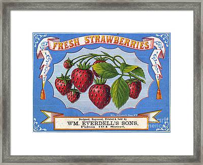 Fresh Strawberries Fruit Label Framed Print