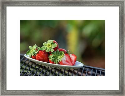 Fresh Strawberries Framed Print by Gabrielle Harrison