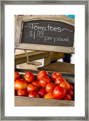Fresh The Garden Tomatoes Framed Print by Teri Virbickis
