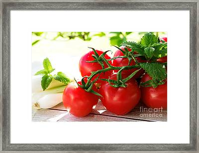 Fresh Tomatos Framed Print by Tanja Riedel