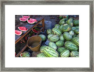Fresh Watermelons For Sale Framed Print by Sami Sarkis
