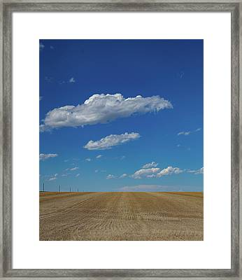 Freshly Planted Wheat Field On The Eastern Plains Of Colorado Framed Print