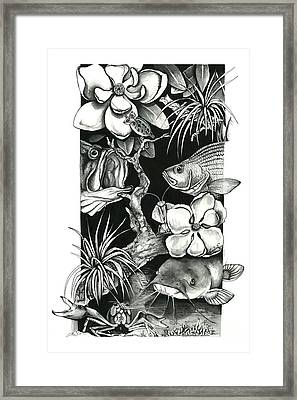 Freshwater Collage Framed Print by Jacqueline Endlich