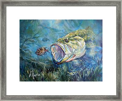 Freshwater Framed Print by Tom Dauria