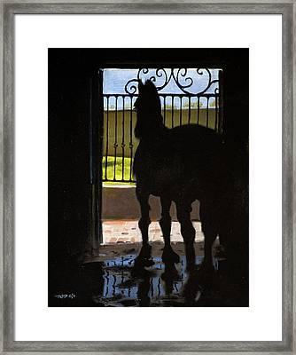 Friesian Silhouette Framed Print