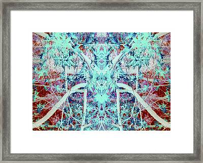 Friend In The Aethers Framed Print