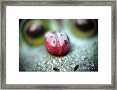 Friendly Visitor Framed Print