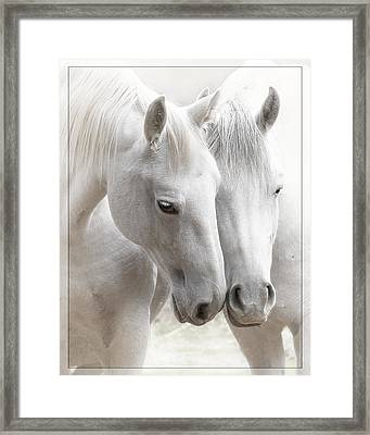 Friends Framed Print by Wes and Dotty Weber