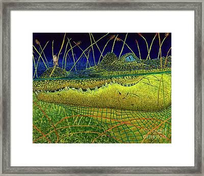 Swamp Gathering Framed Print