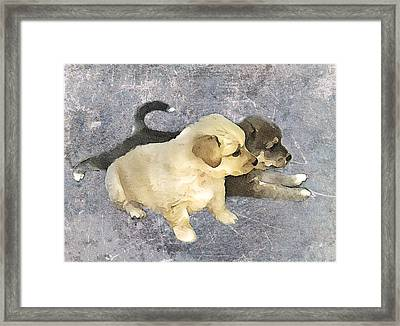Friends Forever  Framed Print by Svetlana Sewell