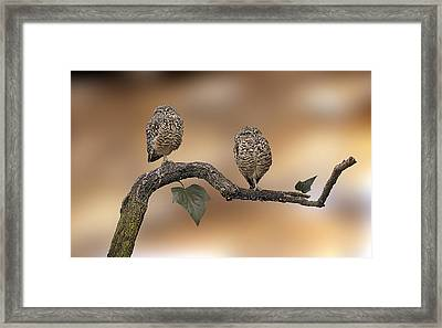 Framed Print featuring the photograph Friends by Gouzel -