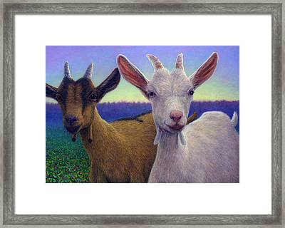 Friends Framed Print by James W Johnson
