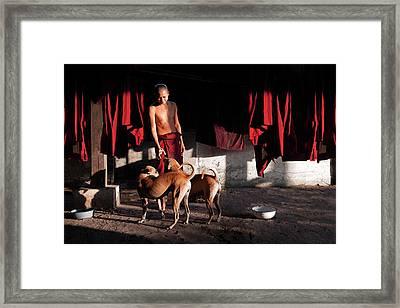 Friends Framed Print by Marji Lang