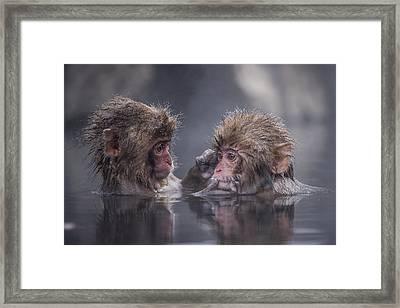 Friends Framed Print