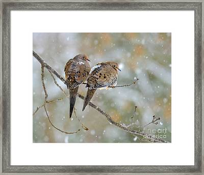 Friends Through The Storm Framed Print
