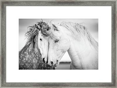 Friends V Framed Print