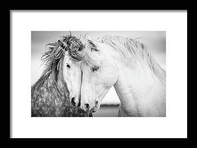Black And White Framed Prints