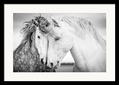 Black And White Art Framed Prints