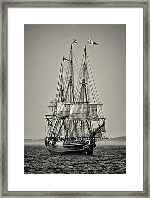 Friendship II Framed Print
