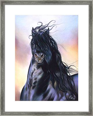 Friesian Spirit Framed Print
