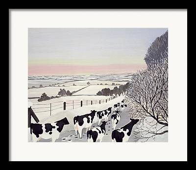 Cattle Cards Framed Prints