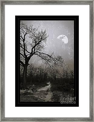 Frigid Moonlit Night Framed Print