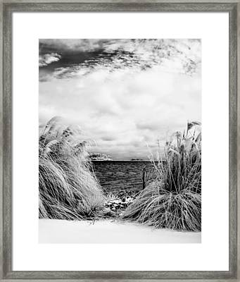 Frigid Shore Framed Print