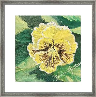 Frilly Yellow Pansy Framed Print