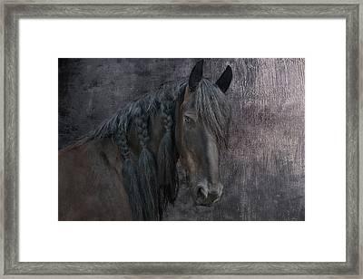 Frisian Girl Framed Print by Joachim G Pinkawa