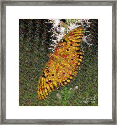 Fritillary Butterfly Mosaic Framed Print by Scott Camazine