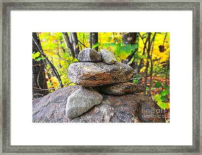 Frog Cairn Framed Print by Catherine Reusch Daley