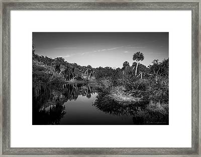 Frog Creek 2 Framed Print by Marvin Spates