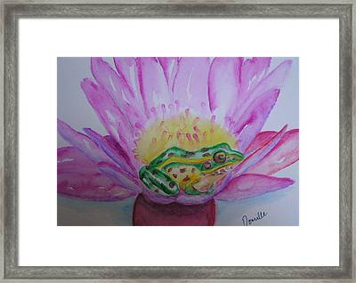 Frog Framed Print by Donielle Boal