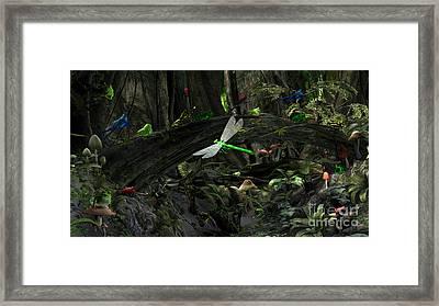 Frog Glen Framed Print by Methune Hively