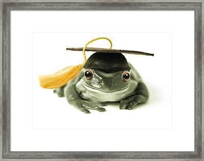 Frog Graduate Framed Print