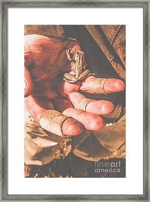 Frog In Hand Framed Print by Jorgo Photography - Wall Art Gallery