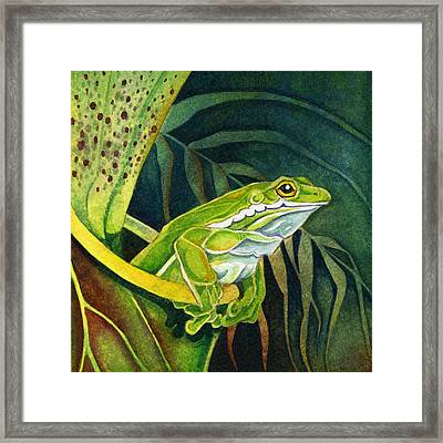 Frog In Pitcher Plant Framed Print