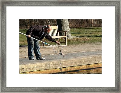 Frog In The Net Framed Print