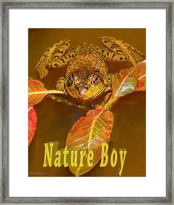 Frog Nature Boy Framed Print by LeeAnn McLaneGoetz McLaneGoetzStudioLLCcom