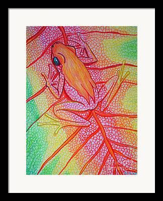 Frog On Leaf Art Framed Prints