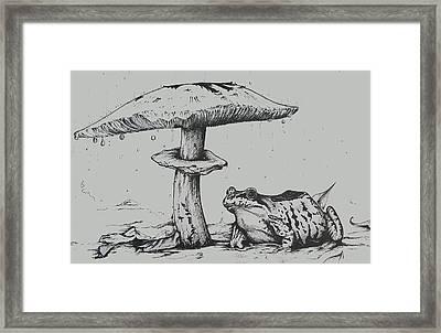 Frog Takes Shelter Framed Print