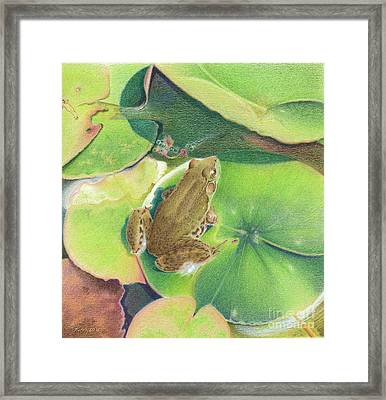 Froggie Framed Print by Elizabeth Dobbs