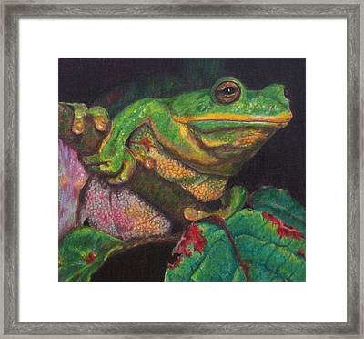 Framed Print featuring the painting Froggie by Karen Ilari