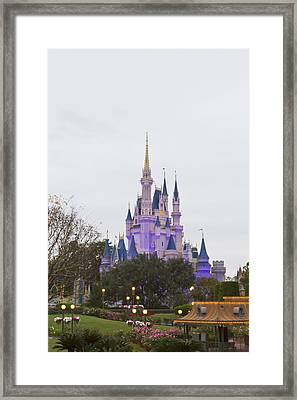 From Across The Yard Framed Print