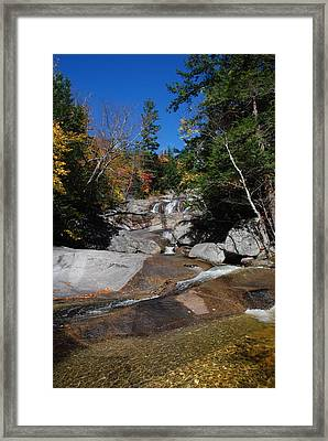 From Below Framed Print by Clay Peters