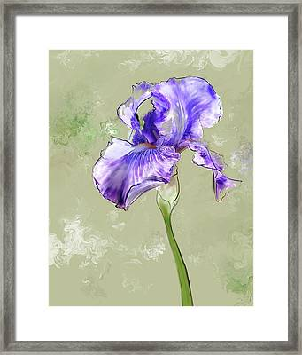 From Charlotte's Garden Framed Print